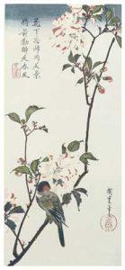 Chinese Herbal Medicine 2